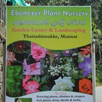 Ebenezer Plant Nursery