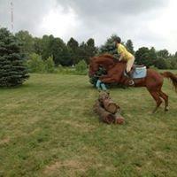 Fairy Tale Horse Farm