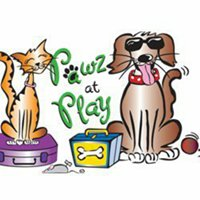 Pawz at Play