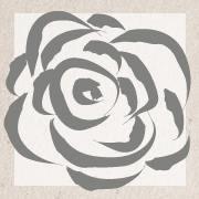 The Averi Rose