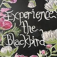 Blackbird Mercantile & Trading Co.