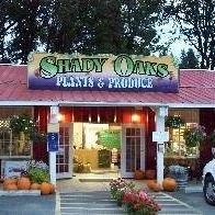Shady Oaks Plants and Produce