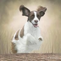 Photography & Pet Paintings by Arica Dorff