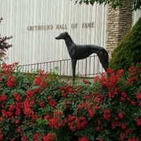 Greyhound Hall of Fame Museum