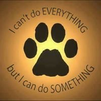 Four Paws Rescue Network of KS