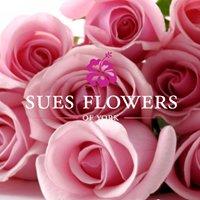 Sues Flowers Of York