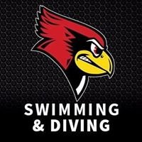 Illinois State Swimming and Diving
