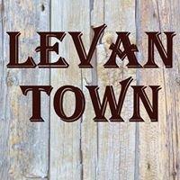 Levan Town