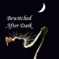 Bewitched After Dark