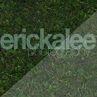 Ericka Lee Photography