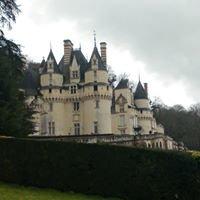 rigny usse Château De La Belle Au Bois Dormant