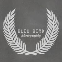 Bleu Bird Photography