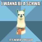 SCHWA-Montana