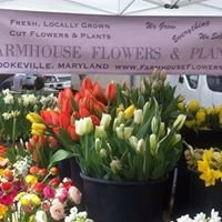 Farmhouse Flowers & Plants