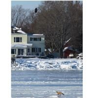 Fore River Watershed Association