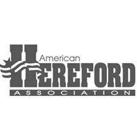 Buy Hereford