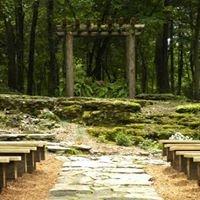 The Wedding Woods