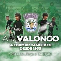Associação Desportiva de Valongo