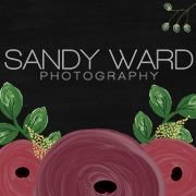 Sandy Ward Photography