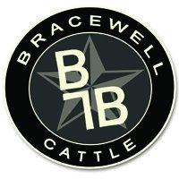 Bracewell Cattle