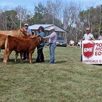 KCH Cattle CO.