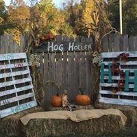 Hog Holler Corn Maze