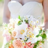 Mary Tuck Wedding Celebrant