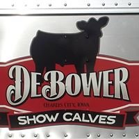 DEBOWER SHOW CALVES