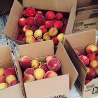 The Orchard Farm