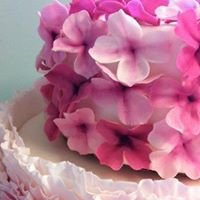 Florabunda & Cake