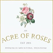 Acre of Roses