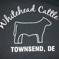 Whitehead Cattle Co.