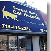 Forest Hills Cat Hospital