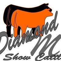 Diamond M Show Cattle