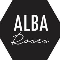 Alba Roses