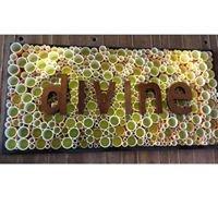 Divine Cafe at Springs Preserve