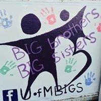 University of Minnesota Big Brothers Big Sisters Student Group