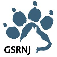 German Shepherd Rescue of New Jersey