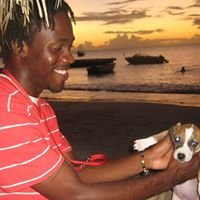 GrenVet Island Veterinary Services (GIVS)
