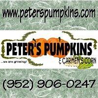 Peter's Pumpkins & Carmen's Corn