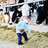 Hillcrest Farms Inc