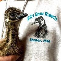 E2's Emu Ranch
