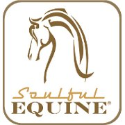 Soulful Equine
