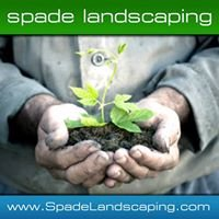 Spade Landscaping