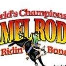 Hamel Rodeo & Bull Ridin' Bonanza