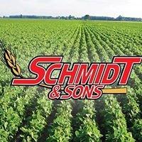 Schmidt & Sons, Inc