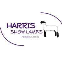 Harris Show Lambs