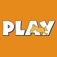 PLAY Doggie Daycare