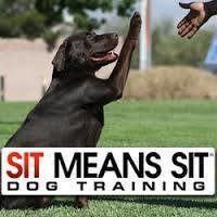 Sit Means Sit Dog Training Minneapolis