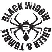 Black Widow Cheer Gym